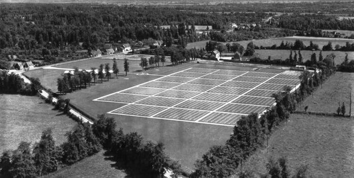 Cemetery Blosville 12 November 1946.jpg