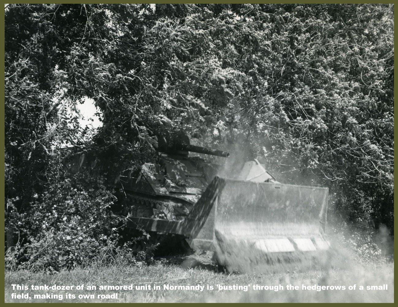 hedgerow tank dozer