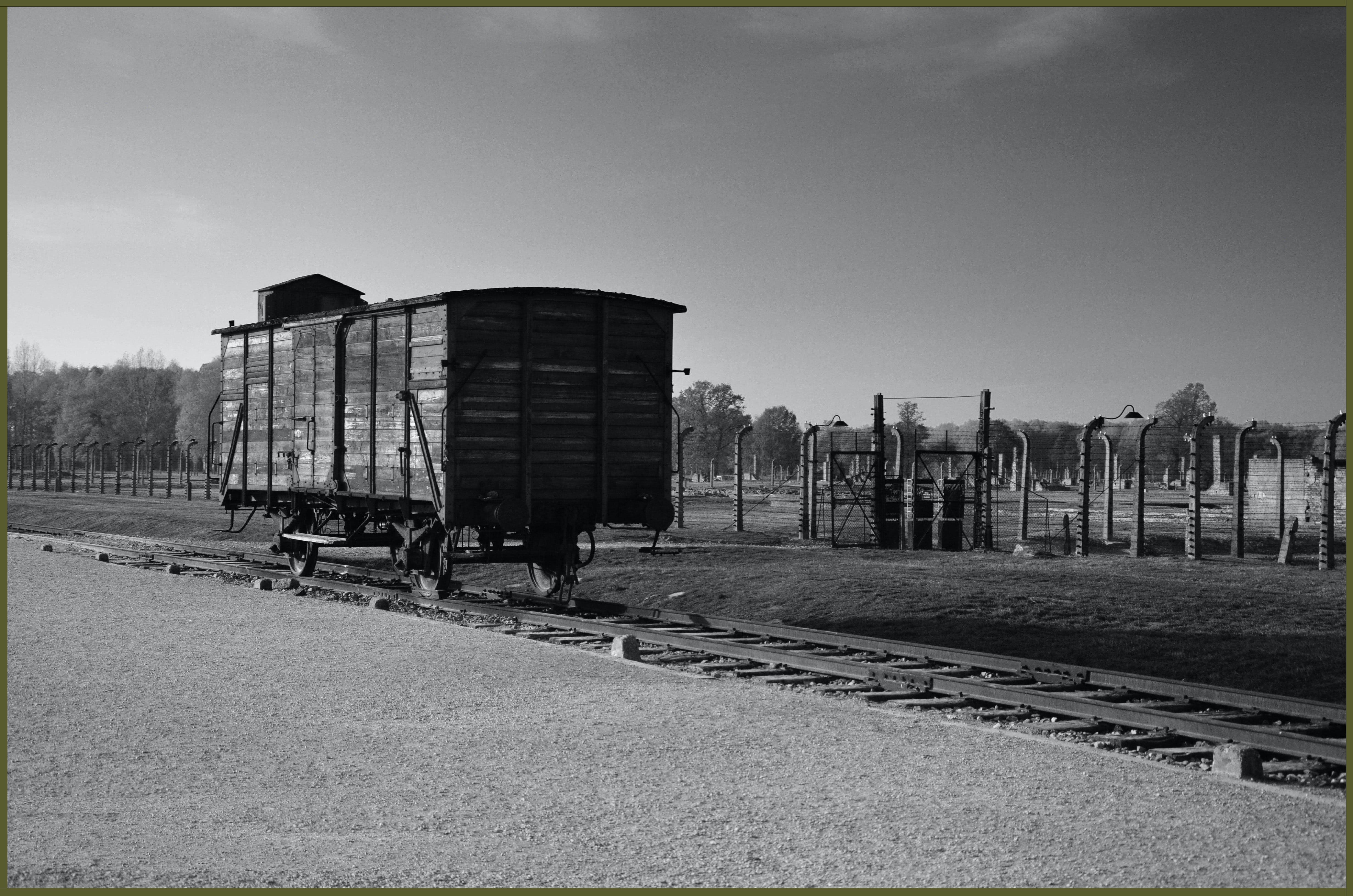 wagon auschwitz copy