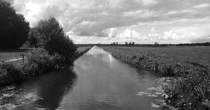 Les Marais noir et blanc.jpg