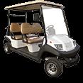golf cart 1-1